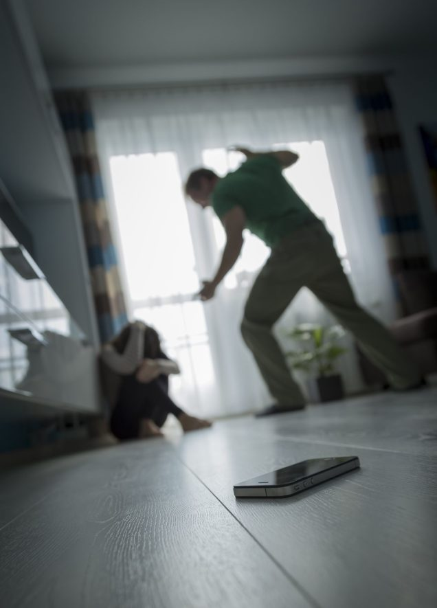 Hiring a Domestic Violence Lawyer and Other Tips to Fight Your Case